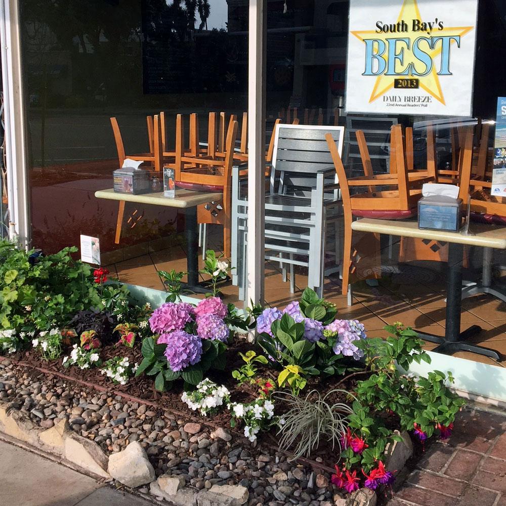 Village Pizza Storefront In Bloom - Redondo Beach