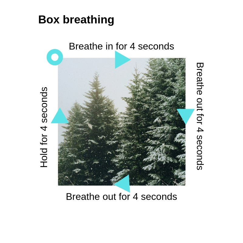 Box breathing graphic.jpg