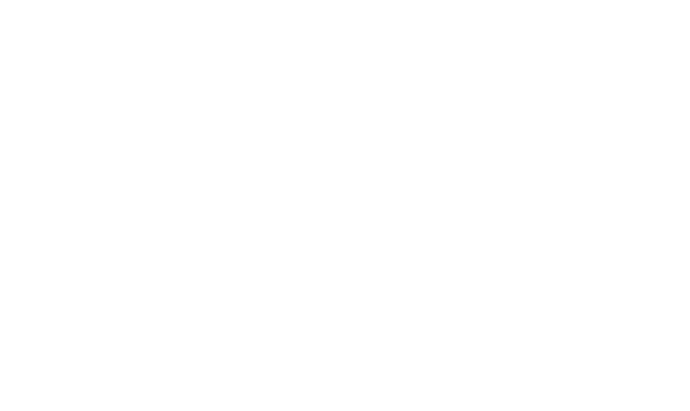 The StiggityStackz Foundation -logo-white.png
