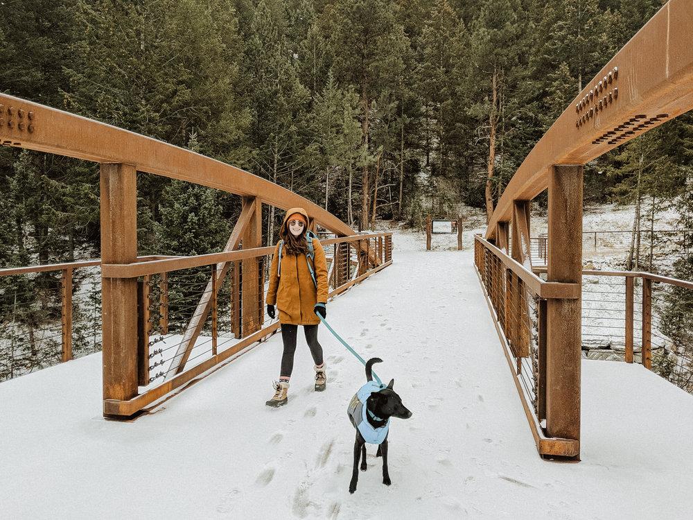 Winter Hike 3-2.jpg