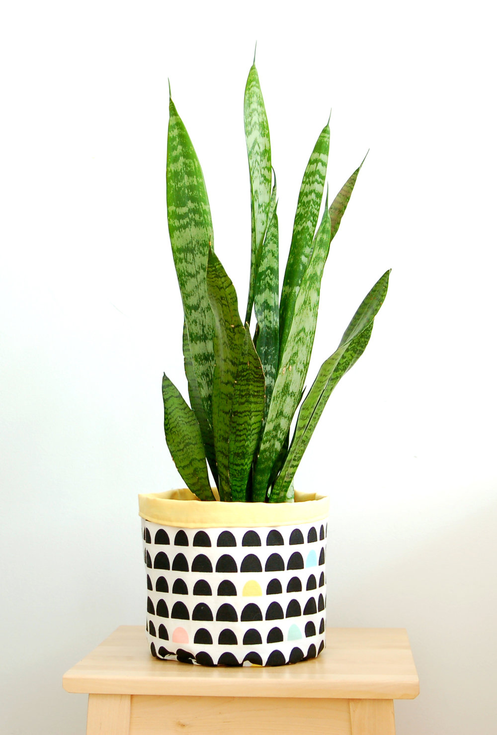 tutorial diy macetero flower pot www.studiocostura.com