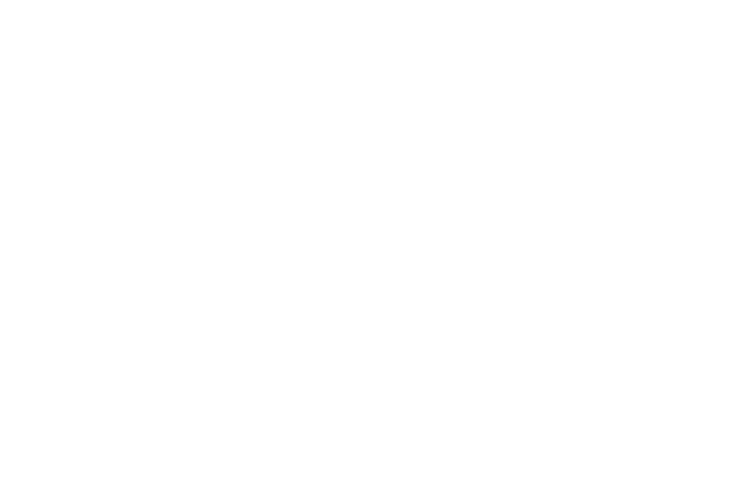 Oliver The Crow