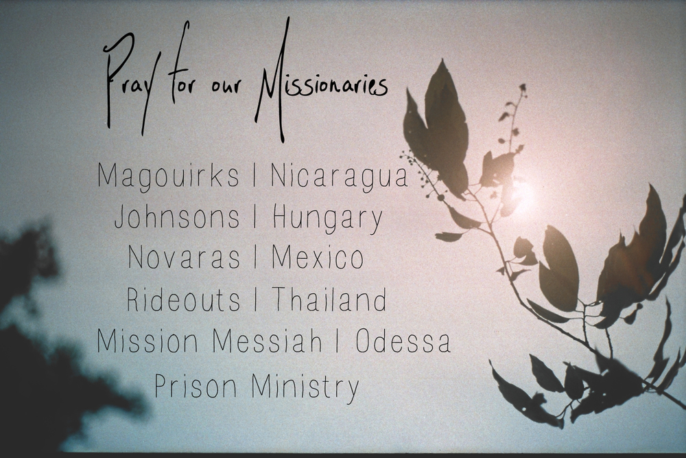 missionaries slide.jpg