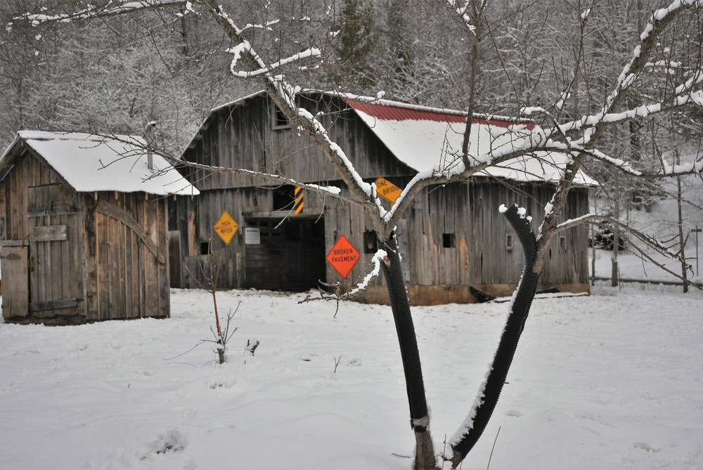 The Barn and Outhouse