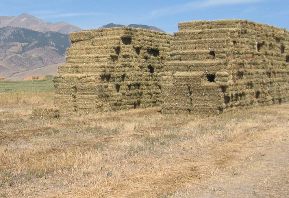 Noxious Weed Free Forage and Straw (NWFF&S) Certification Program >