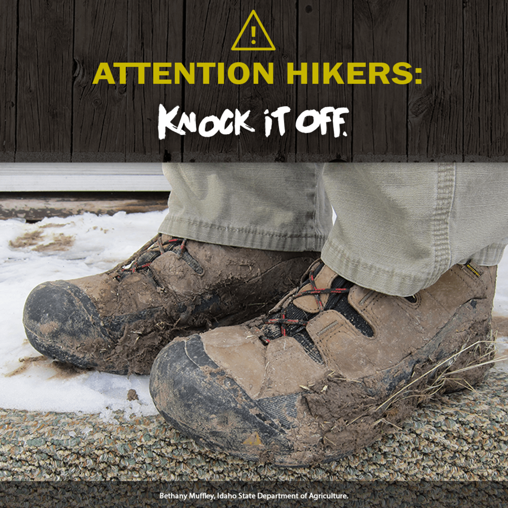 HikersFrontPage.png