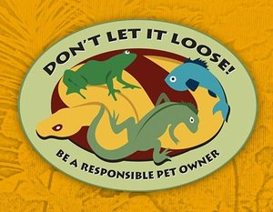 Be A Responsible Pet Owner - Learn More >