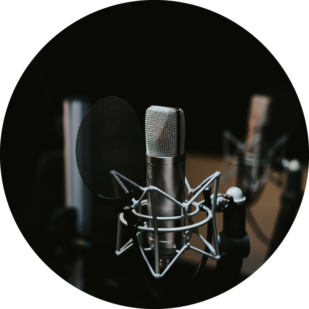 Jose Villaseñor// Turtle Talks Radio