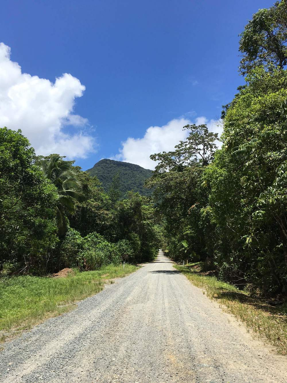 Road from Cape Cape Tribulation to Rainforest Hideaway