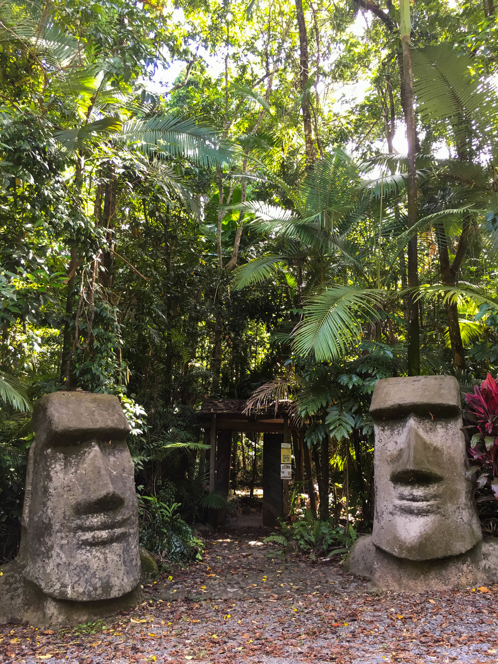 Entrance to Rainforest Hideaway