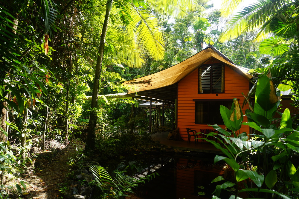 Rainforest Hideaway, Cape Tribulation.