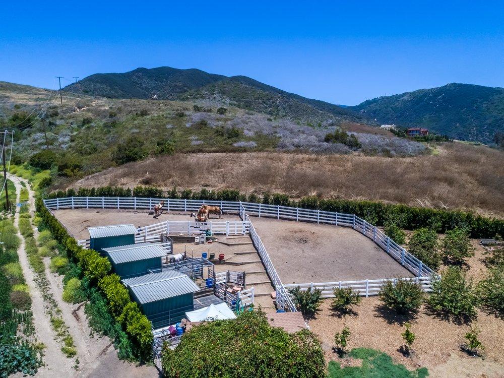 008 Horse Stable -5957 Cavalleri Rd Rustic Ranch.jpg