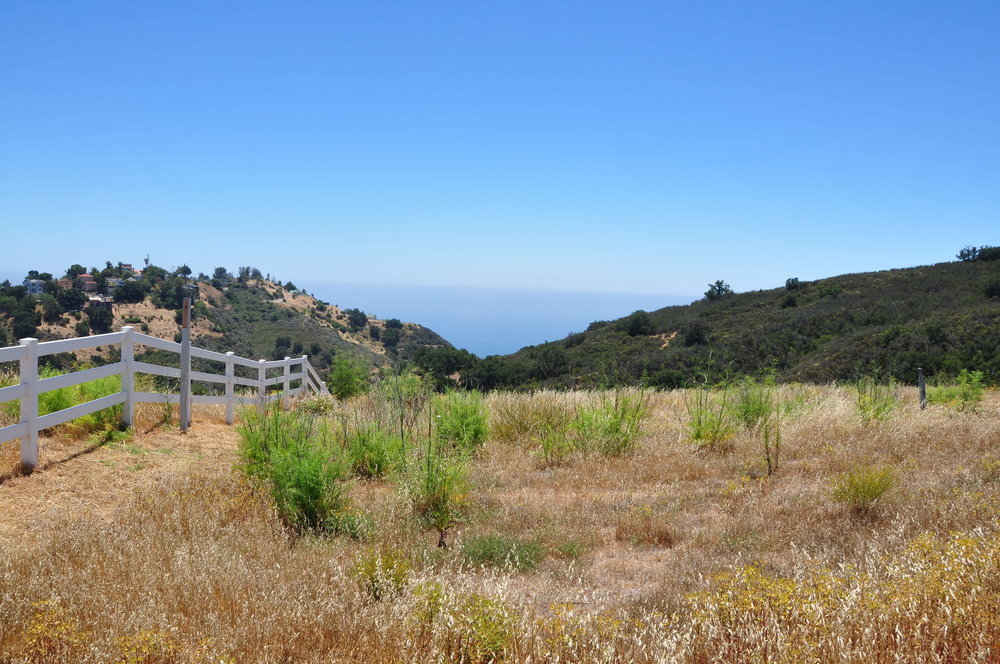 018 Old Chimney Road For Sale Lease The Malibu Life Team Luxury Real Estate.JPG