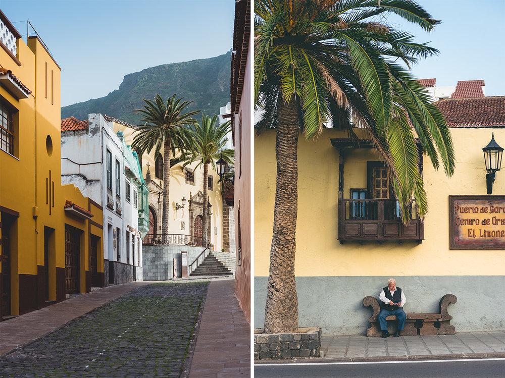 travel-photography-tenerife-street-palmtree.jpg