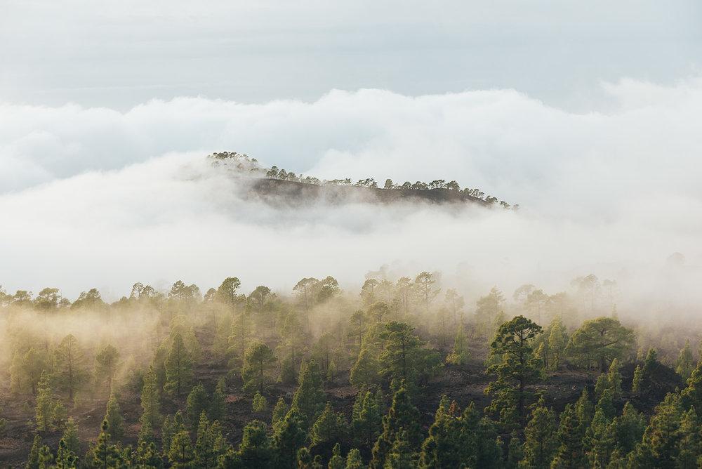 travel-tenerife-mountains-04.jpg