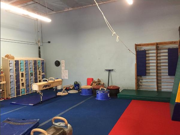 1accord-scega gymnastics1-toni devon