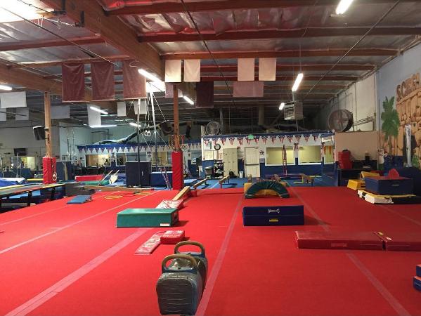 1accord-scega gymnastics2-toni devon