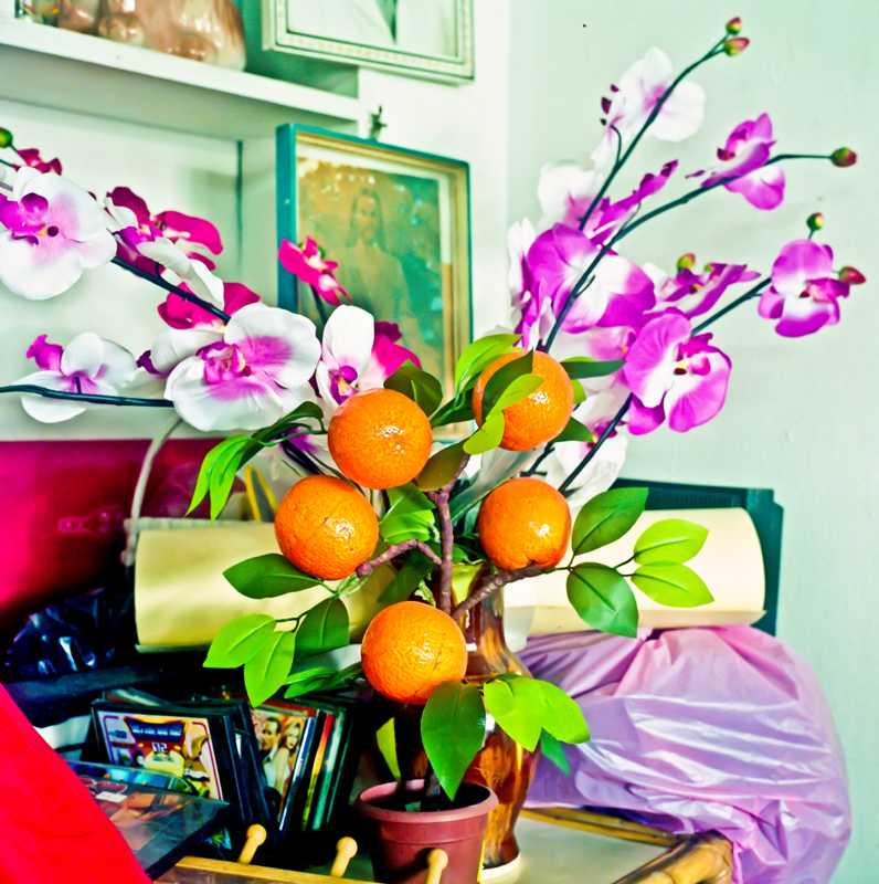 Oranges and Flowers, Malaysia.jpg