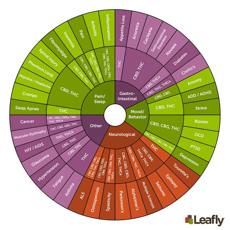 A great infographic from Leafly.com to pinpoint which cannabinoids coincide with different ailments.