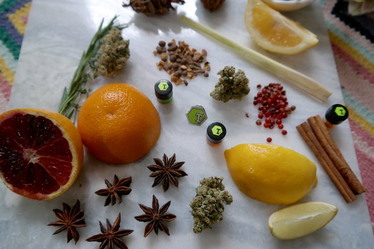 The Magical Powers of Plant Terpenes — The Garden Party