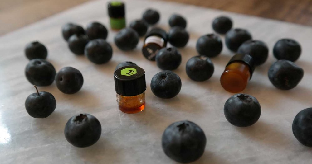 A dash of  EvoLab's ZenBerry FreshTerps  adds a hint of earthiness to this refreshing cocktail.