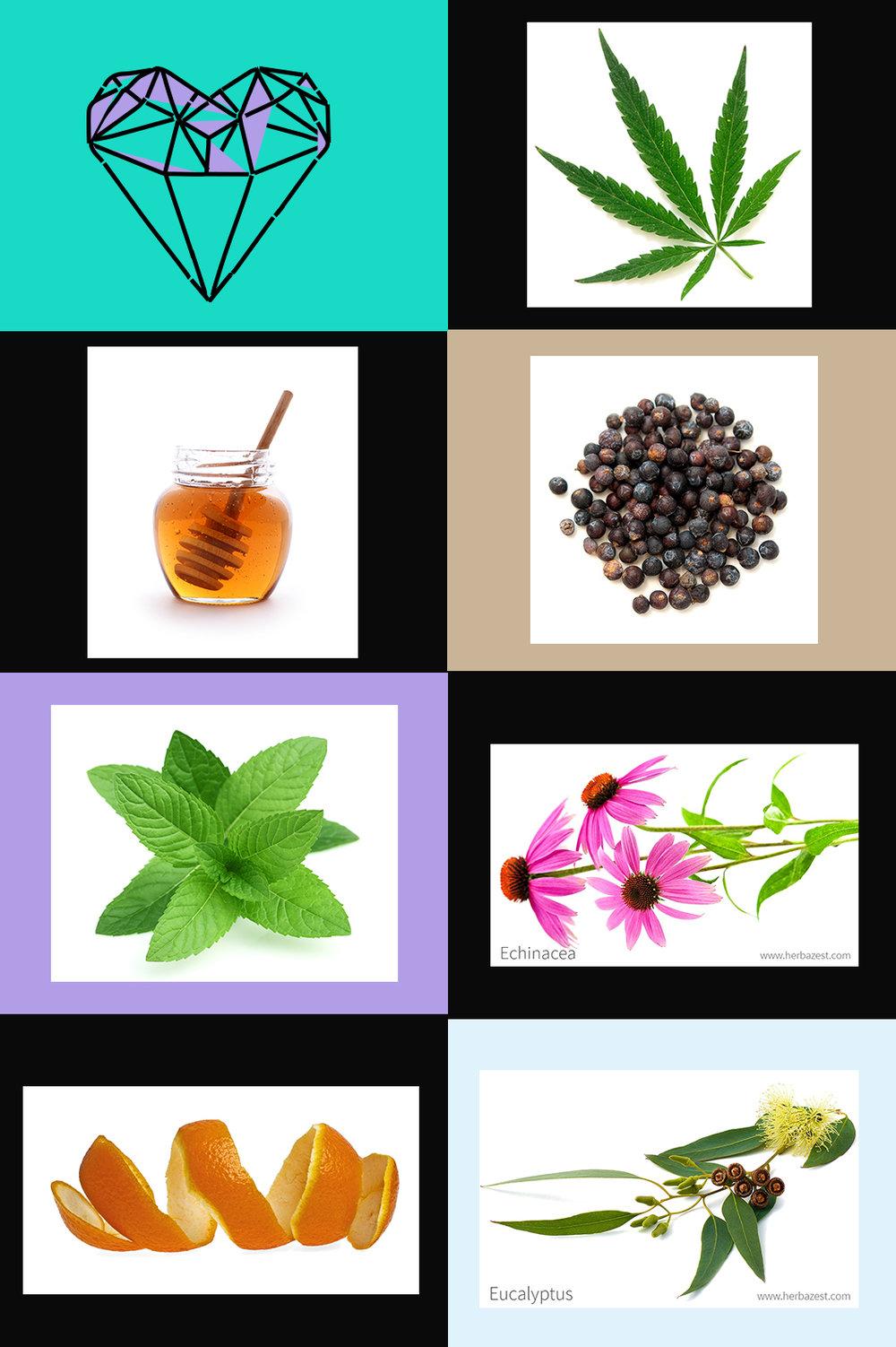 cannabiscolds-1.jpg