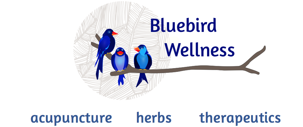 Bluebird Wellness