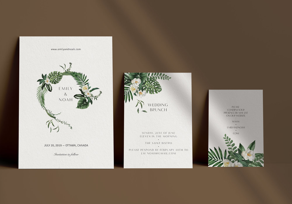 Carta Plena Emily Suite Cards