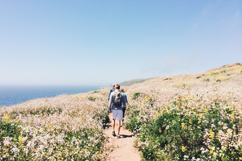 Tomales Point Trail