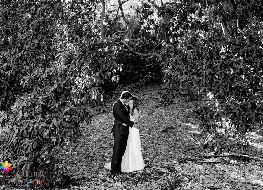 56 Kings Park wedding photographer
