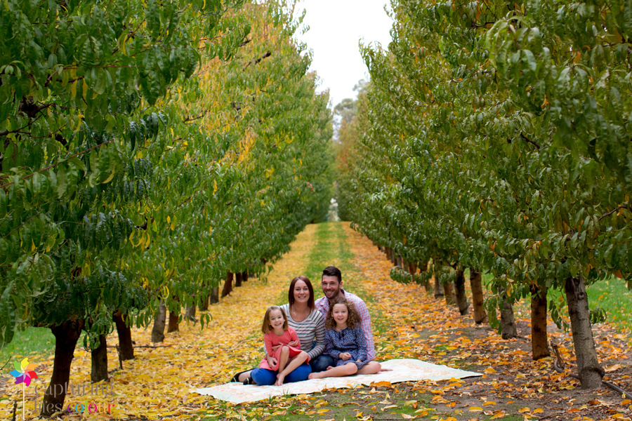 Perth family photographer orchard 7