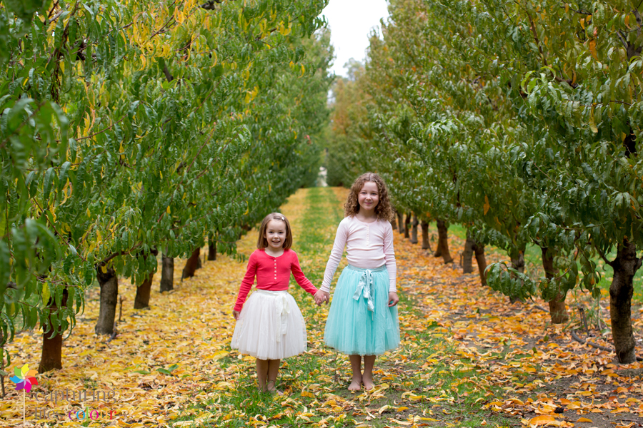 Perth family photographer orchard 30
