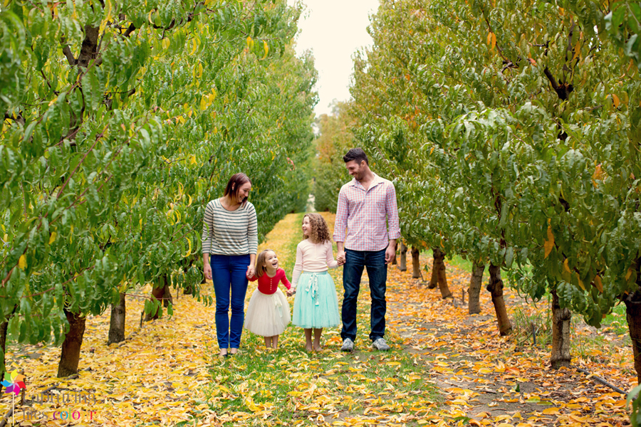 Perth family photographer orchard 31