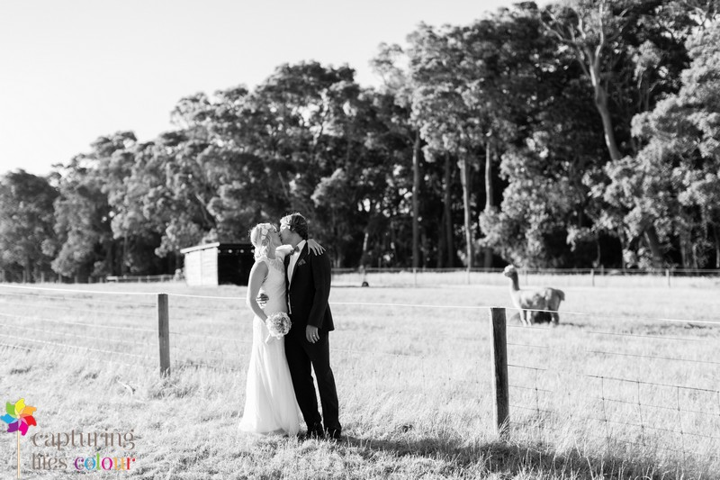 060Dunsborough-Wedding-Photographer-Edwards-Winery-Margaret-River-Photographer.jpg