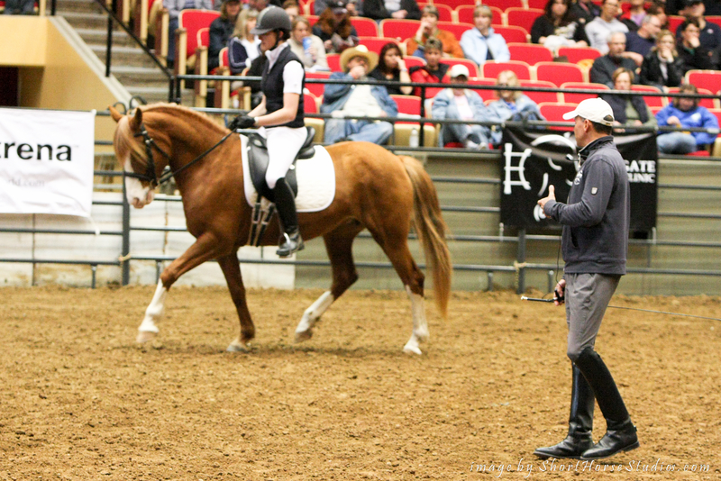 Aloutte IK working with Olympian Steffen Peters at the Midwest Horse Fair