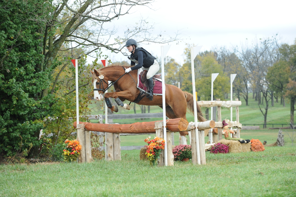 Allie open oxer.JPG