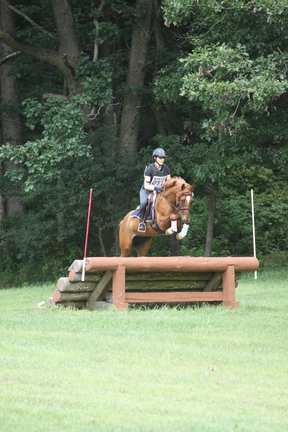Downhill oxer.JPG