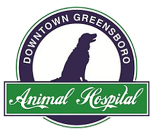downtown greensboro vet.png