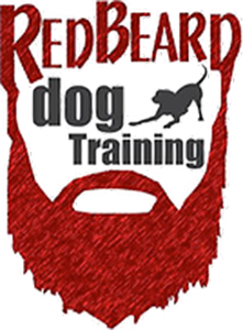 red beard dog training.png