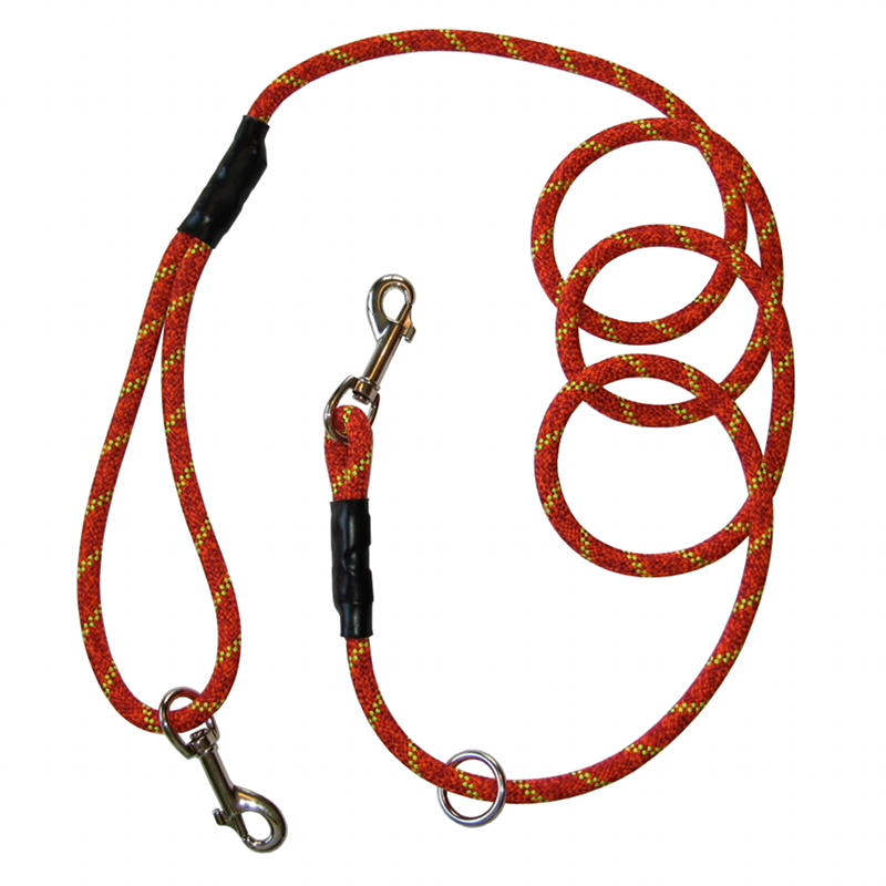 mountain dog leashes.png