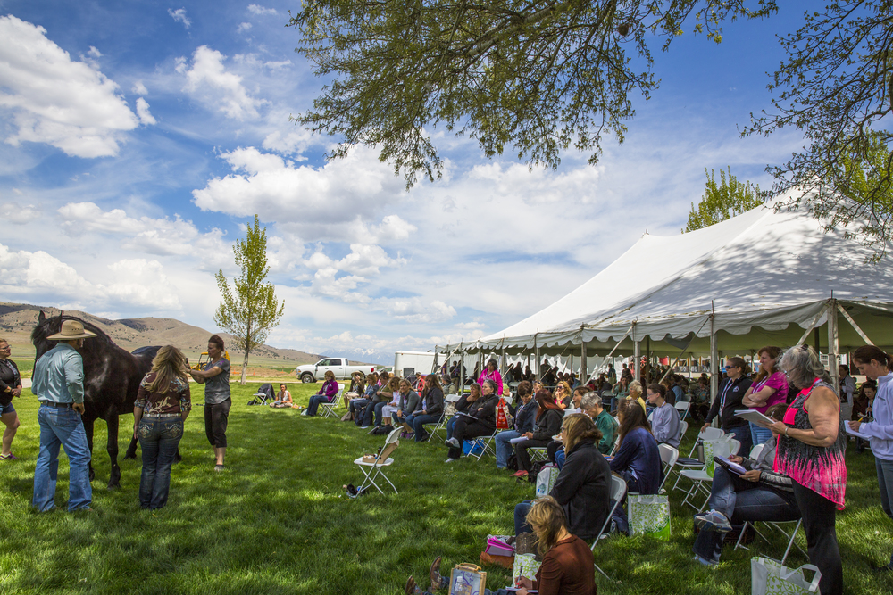 Young Living's Oils and Animals Event