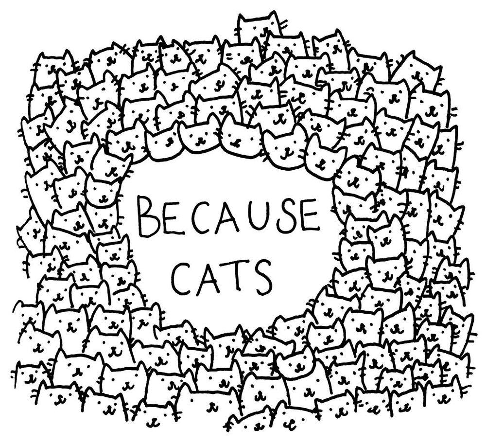 because cats.jpg