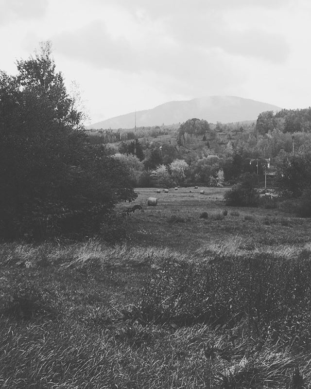 Take me back . . . #field #mountain #canada #landscape #photography #blackandwhitephotography #horizon #nature #pagan #farm #sutton #montsutton #grass #goth