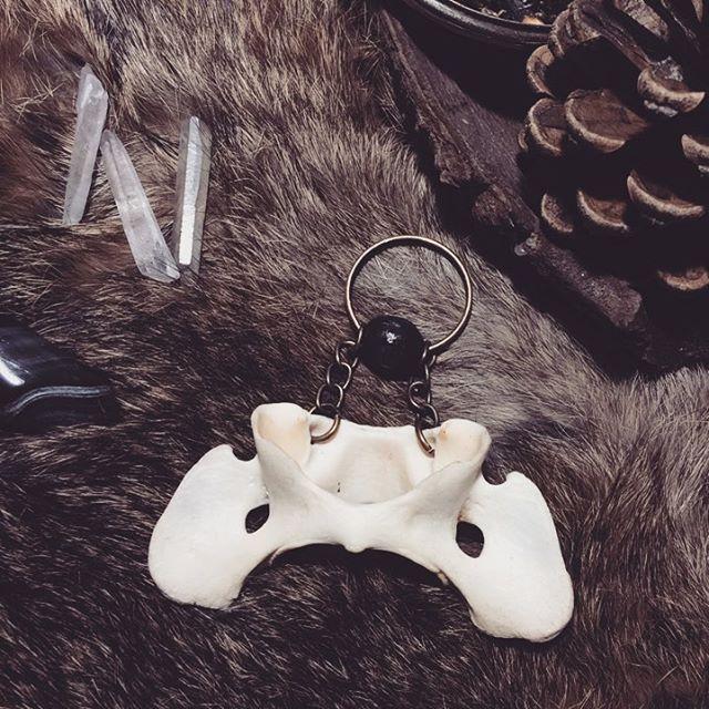 Vertebrae keychain with charred wood bead! Can also be made a pendant if you want!  DM if you're interested! . . . #taxidermy  #bone #vertabrae #jewelry #talisman #witchcraft #pagan #witch #goth #gothgoth #death #art #darkart #darkness #quartz #oddities #fashion #darkfashion #pendant #alternative #nugoth #druid #design