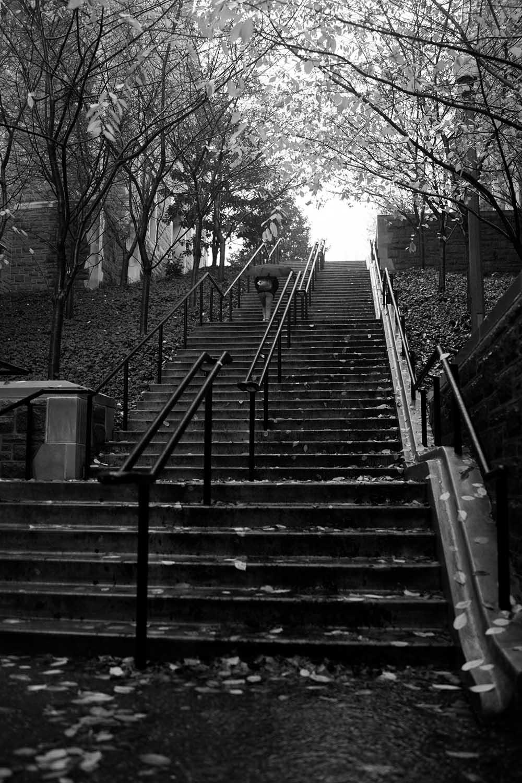 Soaked Stairs.jpg