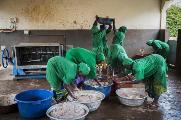 Cooperative members process shea nuts in organic shea butter in Burkina Faso