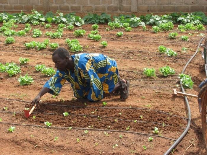 Association Union Fait la Force des Personnes Handicappées, Benin
