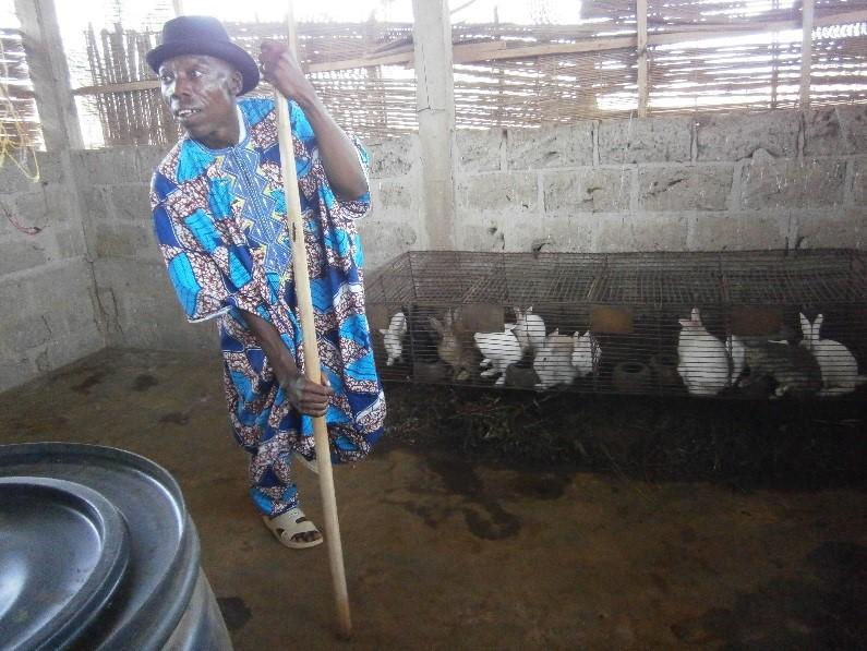 Benin rabbits.jpg