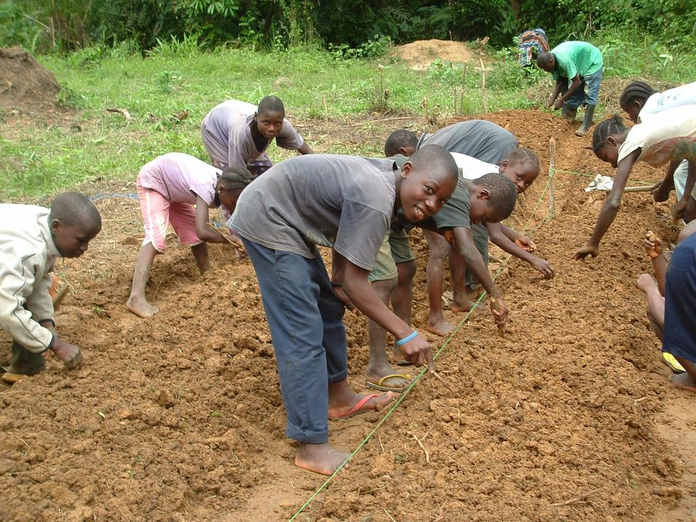 4-H Liberia students planting seeds for a new garden in Montserrado County, Liberia