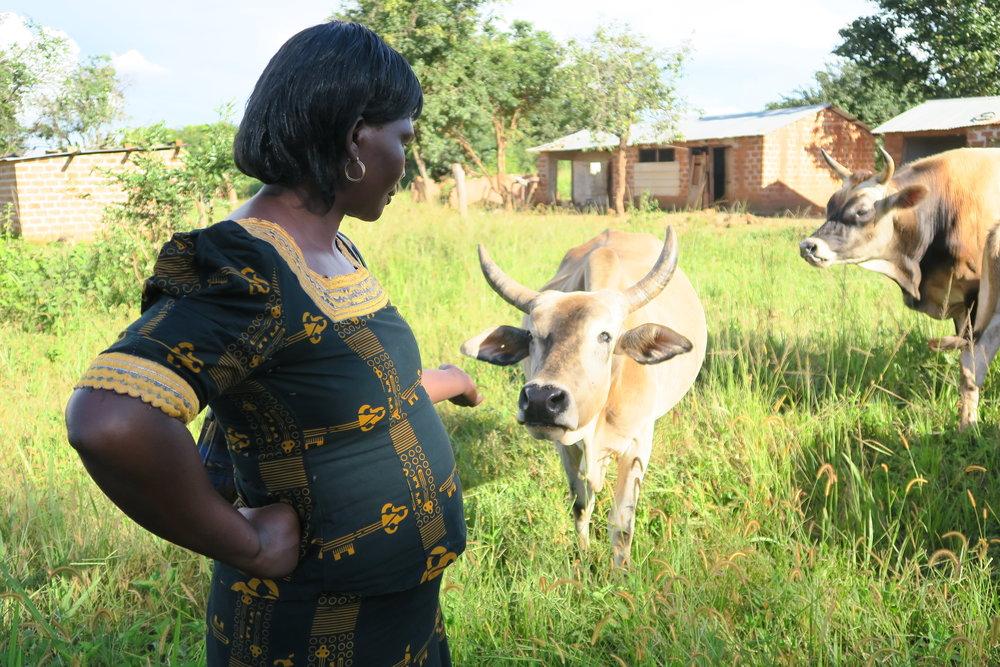 WomanwithCow_Zambia.jpg